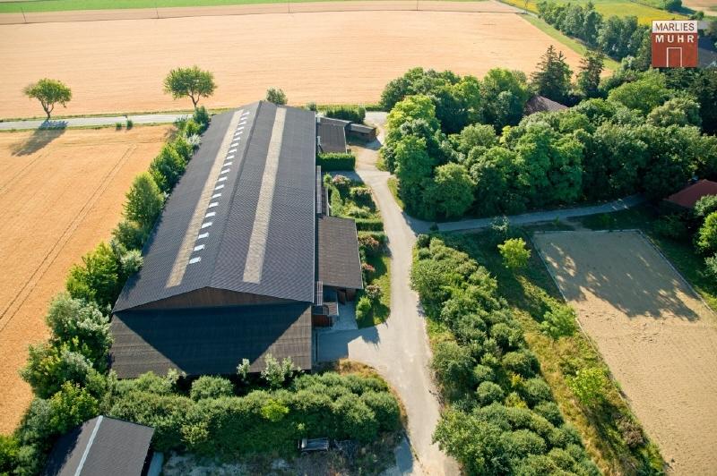 REITGESTÜT: NUR 45 FAHRMINUTEN VON WIEN mit 26 Pferdeboxen, Reithalle /  / 2020Wien Umgebung / Bild 1
