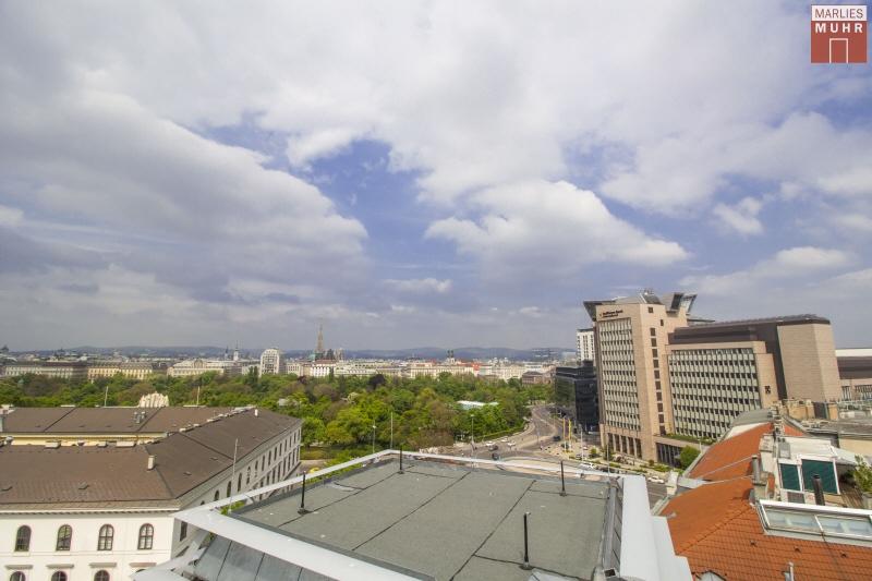 URBAN UND TROTZDEM RUHIG: Dachterrassenwohnung der Extraklasse nähe Wien Mitte /  / 1030Wien / Bild 1
