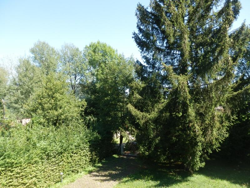 Attersee: Grundstück mit Altbestand zwischen Yachtclub und Golfplatz! /  / 4864Attersee / Bild 2