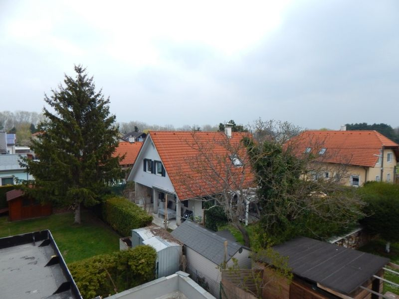 Doppelhäuser nähe Mühlwasser und Donau - Erstbezug /  / 1220Wien / Bild 1